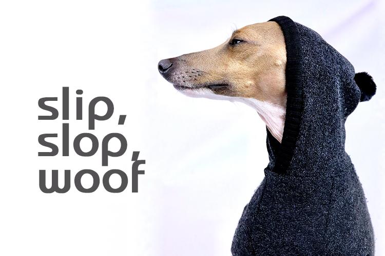 Italian greyhound clothing for your dog