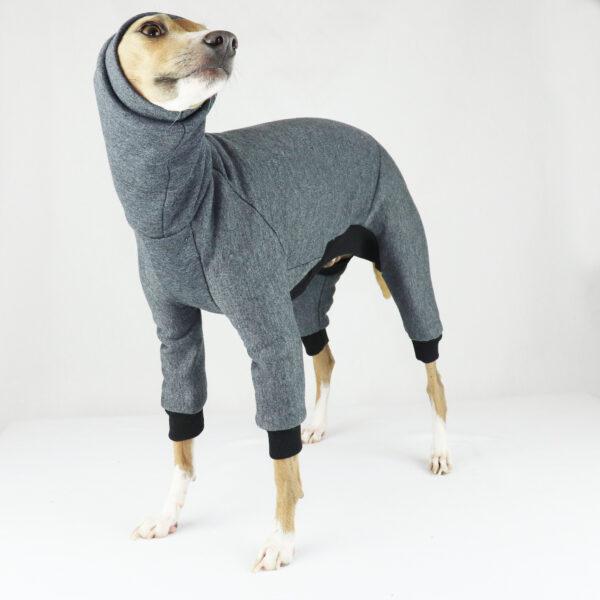 Italian Greyhound Clothing | Iggy Clothing | Iggy Wear | Whippet Clothing