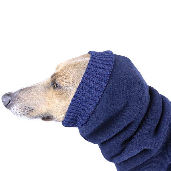 Italian Greyhound Clothing | Iggy Clothing | Royal Hound