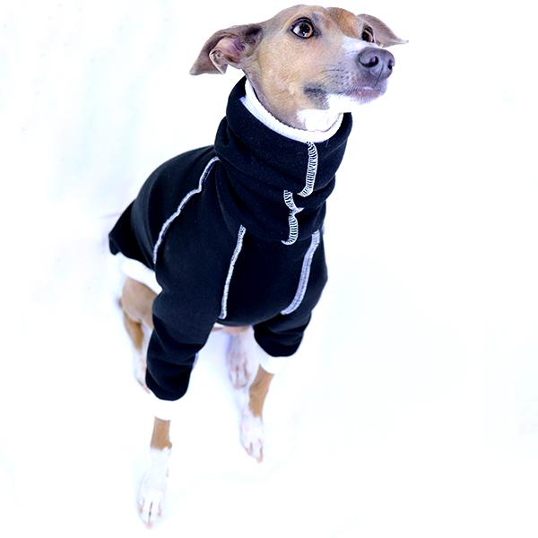 Italian Greyhound Clothing - Half Suit | Royal Hound Clothing