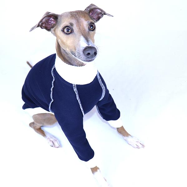 Italian Greyhound Clothing   Royal Hound   Whippet Clothing