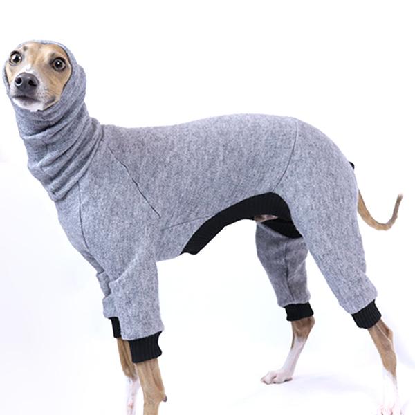 Italian Greyhound Clothing | Royal Hound Clothing | Melbourne Crafted
