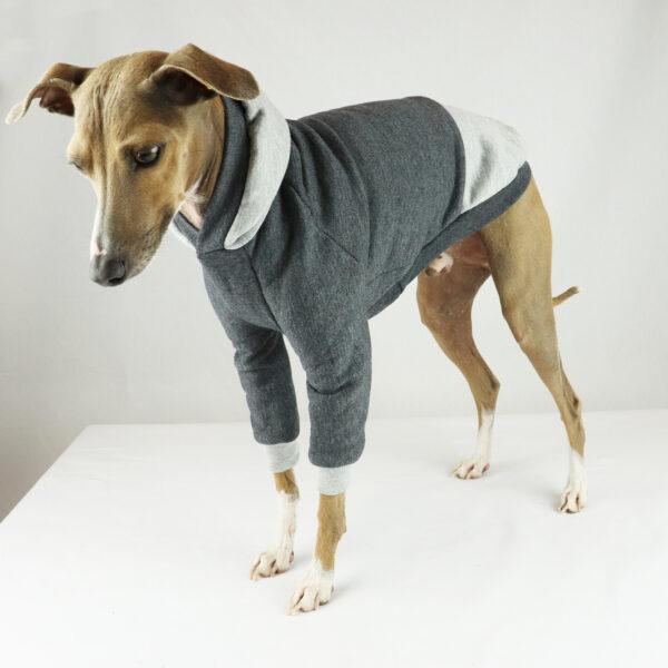 Italian Greyhound Clothing   Whippet Clothing   Iggy Wear