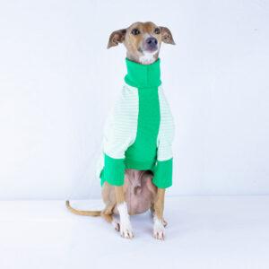 Italian Greyhound Clothing | Iggy Wear | Melbourne