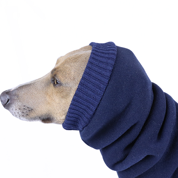 Italian Greyhound Clothing & Whippet Clothing