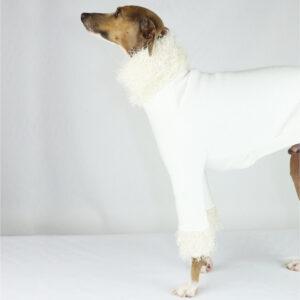 Italian Greyhound Clothing | Whippet Clothing | Iggy Wear | Royal Hound