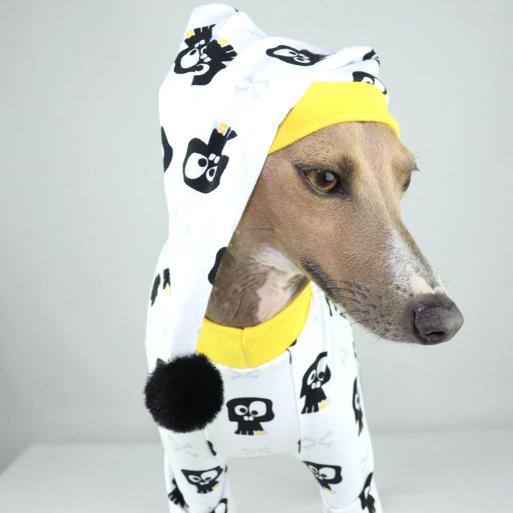 Italian Greyhound Pyjamas   Iggy Clothing   Royal Hound