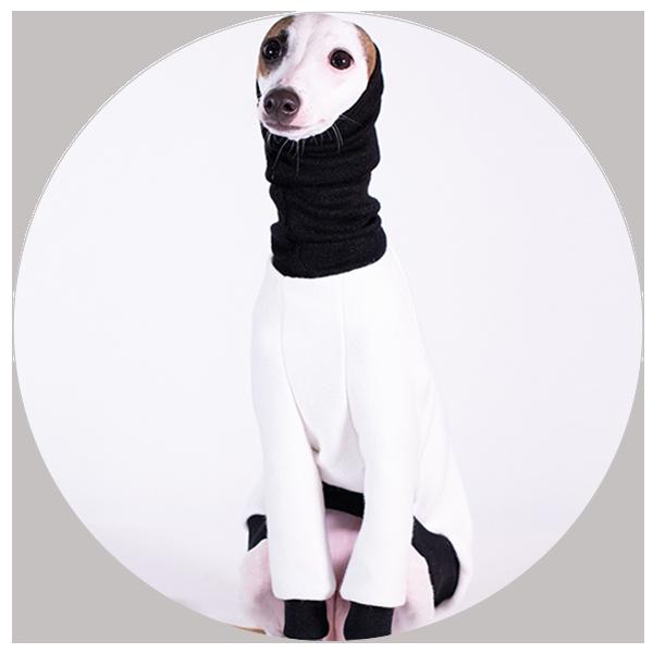 Italian Greyhound Clothing - Oscar & Ophelia